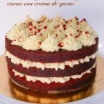 tartas artesanas valencia 008