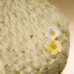tartas artesanas valencia 013