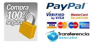 pago-seguro paypal